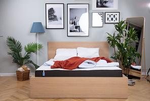 Blue Sleep Concept