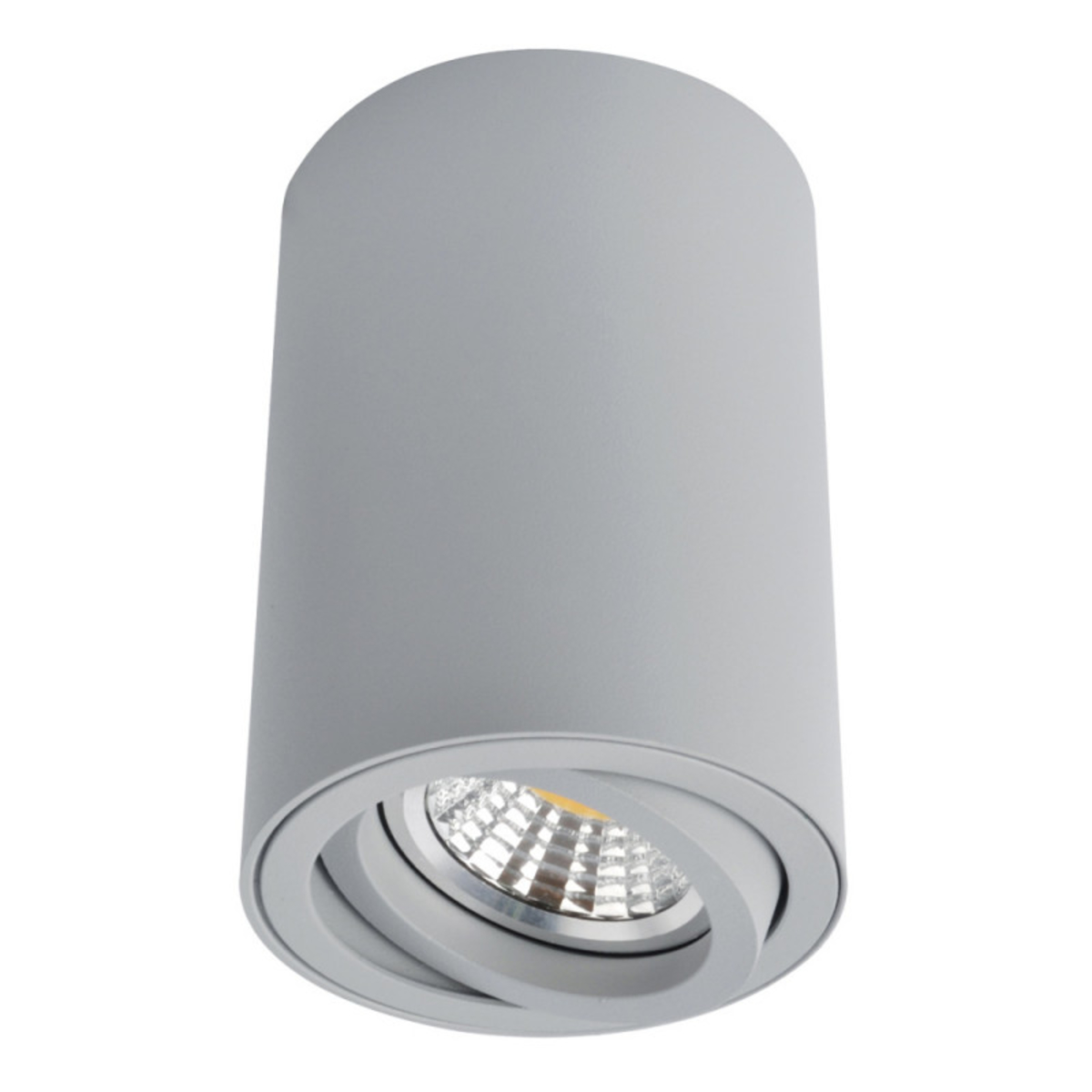 Купить Накладной светильник SENTRY Накладной светильник ARTE Lamp A1560PL-1GY (14727), HomeMe