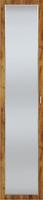 Фасад двери с зеркалом Вега Бавария
