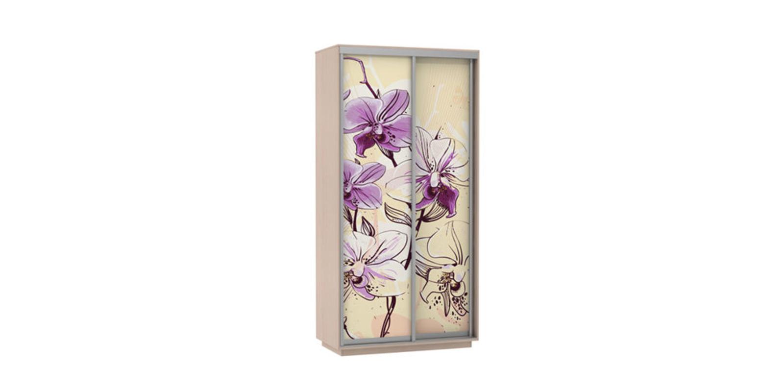 Шкаф-купе двухдверный Байкал 120 см (дуб молочный/орхидея)